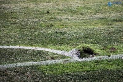 В Одесі фарбують газон у зелений колір