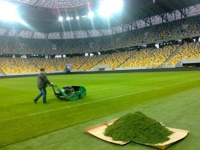 Новый газон «Арены Львов»: подробности
