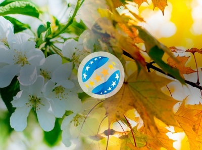Букмекери приймають ставки на перехід УПЛ до формату «весна-осінь»