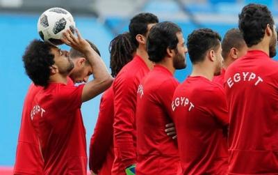 Федерація футболу Єгипту оскаржить суддівство у матчі з Росією