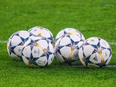 «Динамо» проведе контрольний матч із шведською командою